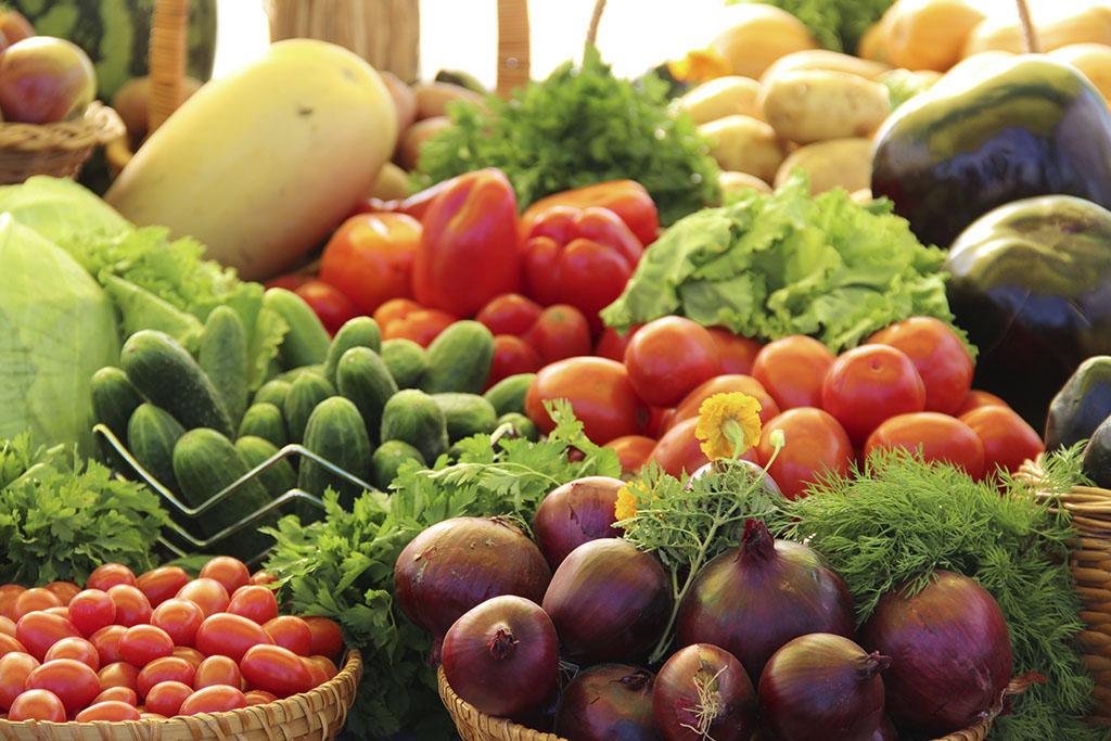С начала года члены СППТ увеличили производство плодоовощной продукции более чем на 80%