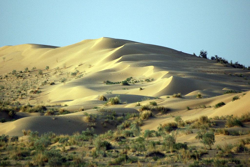 Туркменистан номинирует в Список всемирного наследия ЮНЕСКО три каракумских заповедника