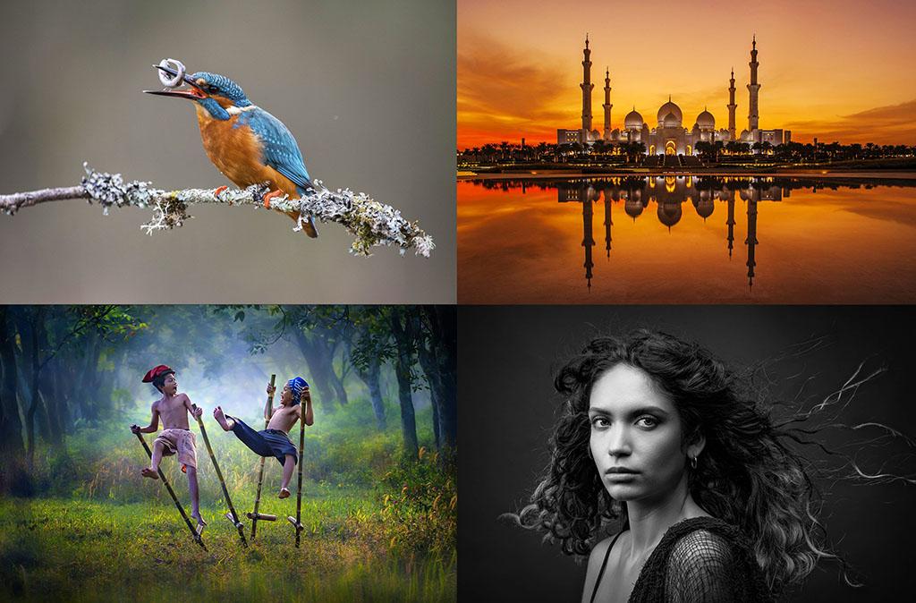 Начался прием работ на ежегодный фотоконкурс «Ферула 2021»